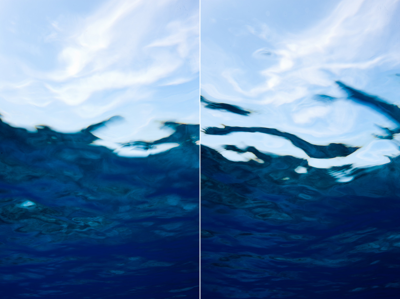 Tim Calver - Underwater Photography